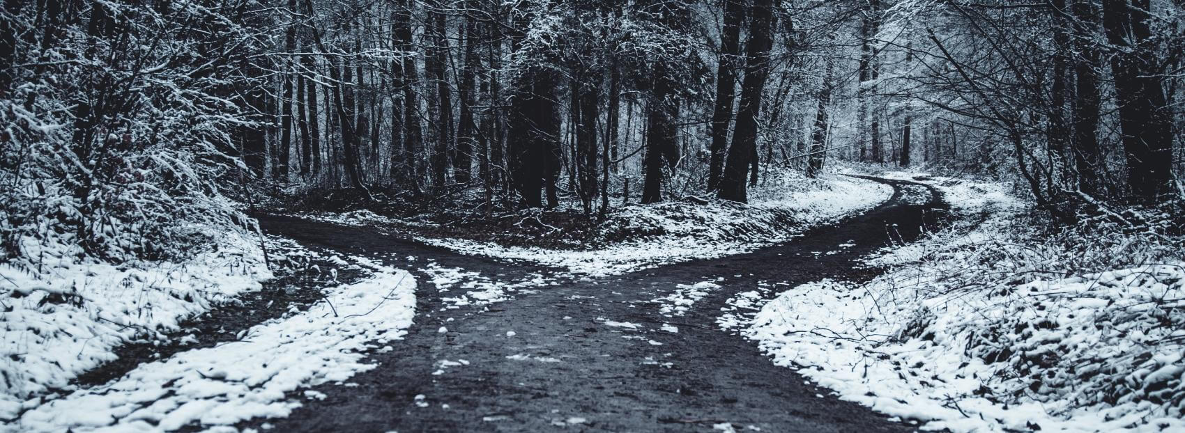 two paths banner - oliver-roos-571292-unsplash