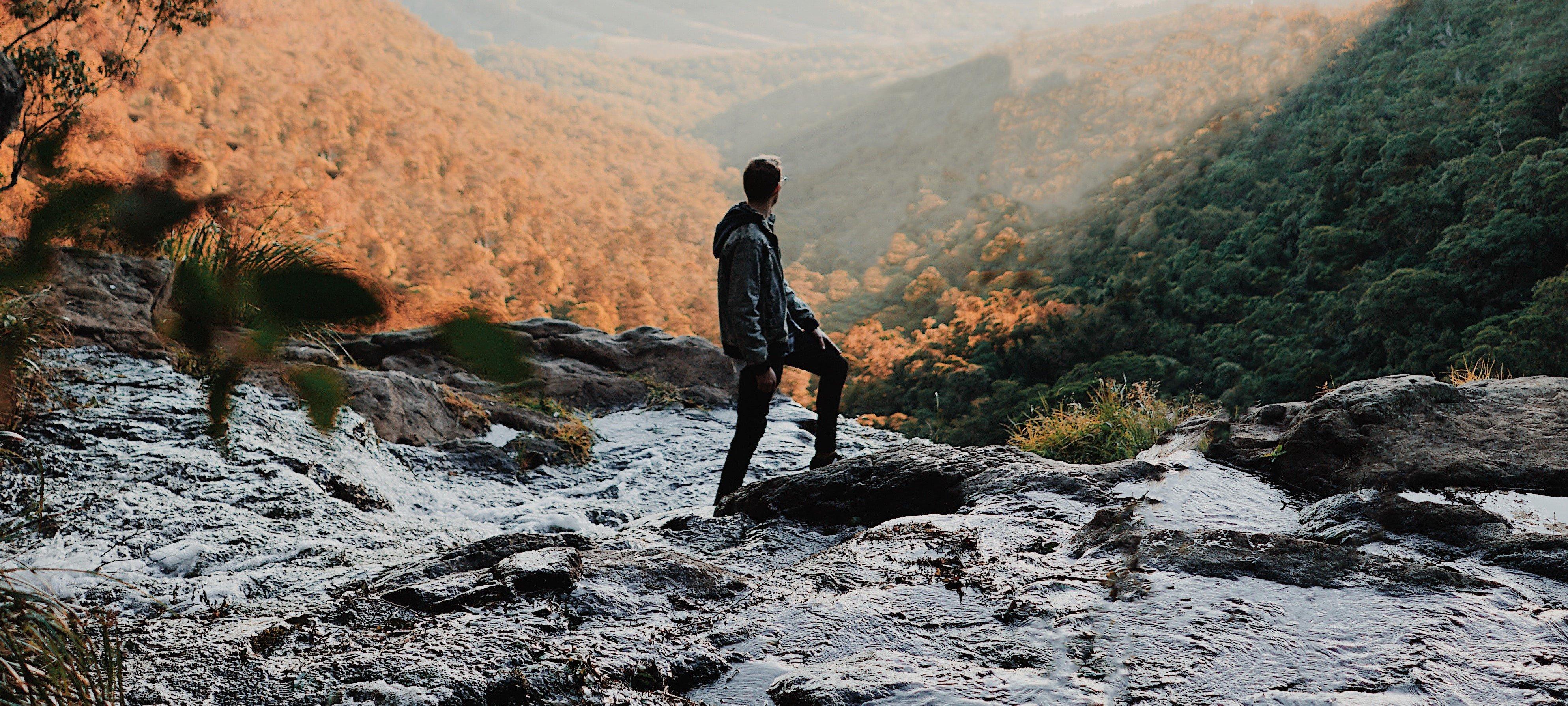 wilderness banner - chris-fuller-J2vmEGujvXQ-unsplash